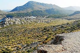 Territori confirma que los Reuben no podrán urbanizar en sus nuevas fincas