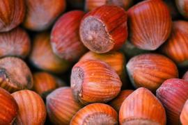 Las avellanas, aliadas de la salud cardiovascular: ¿cuáles son sus propiedades nutricionales?