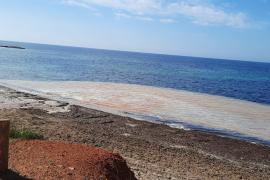¿Qué es la mancha marrón sobre el mar en una playa de Santa Eulària?