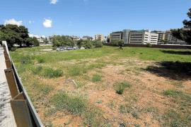 ¿Qué le parece la propuesta de creación de un campamento en Ibiza para atender a los inmigrantes que llegan en pateras?