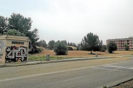 Calvià aprueba pedir un préstamo de 10 millones para construir 99 viviendas sociales
