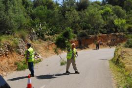 Limpieza de carreteras en Mallorca