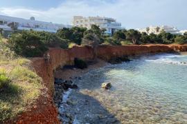 ¿Deberían mejorar el estado de las playas para perros de la isla de Ibiza?