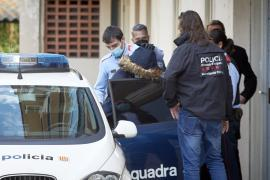 Al menos 300 detenidos y 16 registros al desarticular red de carnés falsos
