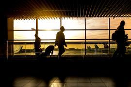 ¿Cómo se sanciona a aquellos viajeros que justifican sus viajes con pruebas PCR falsas?