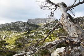 Mola de s'Esclop en la Serra de Tramuntana