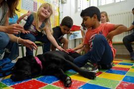 Nara y una terapia canina para seguir dando pasos que consigan la integración total