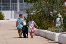 La novedosa terapia canina para niños con necesidades especiales en Ibiza, en imágenes. (Fotos: Marcelo Sastre)