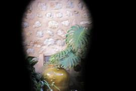 Patio en Biniaraix, Mallorca
