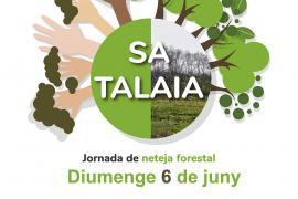 Sant Antoni celebra el Día Mundial del Medio Ambiente con limpiezas y otra escultura 'comeplástico'
