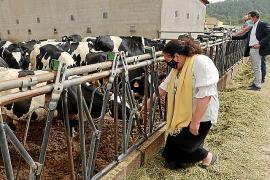 Seis granjas de Mallorca se acreditan en bienestar animal