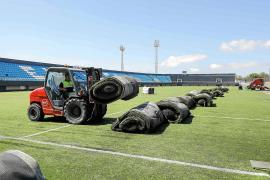 ¿Considera que la UD Ibiza debe tener un trato preferencial tras su ascenso a Segunda División?