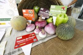La presentación de la campaña de las variedades tradicionales ibicencas de verano, en imágenes.