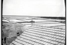 Formentera reconstruye su memoria documental