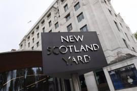Condenado un británico a cinco años de cárcel por acuchillar a 16 gatos