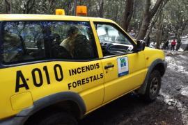 Los incendios forestales calcinan 80,91 hectáreas en lo que va de año en Baleares