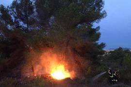 Sobresalto por un incendio forestal de madrugada en el Camí de s'Estanyol