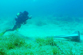 Las anclas arrasan el 20% de la posidonia de Formentera