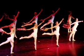 XIV muestra de danza y baile