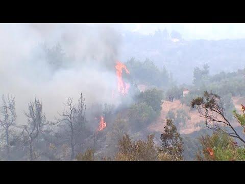 El primer ministro griego pide perdón y promete que los responsables de los incendios rendirán cuentas