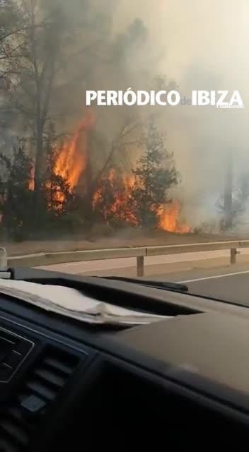 Un incendio forestal quema 0,3 hectáreas de pinar en Sant Joan