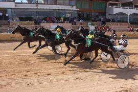 El Consell d'Eivissa invertirá 336.908 euros para reformar un espacio del Hipódromo de Sant Rafel