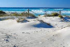 Recuperación de las dunas: positiva pero mejorable