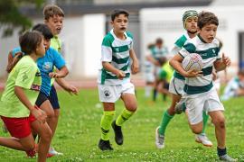 Incertidumbre en el rugby