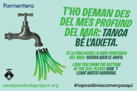 El Consell de Formentera impulsa una campaña de concienciación ambiental sobre la posidonia