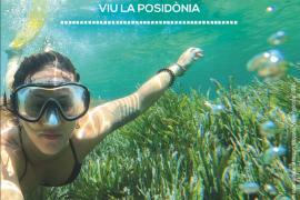 Llega la quinta edición de 'Viu la Posidònia' con una amplia variedad de actividades