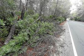 Desprendimientos, árboles caídos y pequeñas inundaciones por la DANA