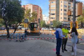 Cort crea un anillo verde en la plaza Guillem Moragues con más espacio para el peatón
