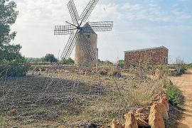 El placer de descubrir Formentera a pie o en bici
