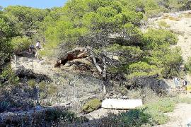 Sant Antoni facilita el acceso a Cala Saladeta con barandillas y una tarima de madera
