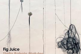 Stella Rahola inaugura el próximo miércoles en El Far de la Mola su obra 'Fig Juice'