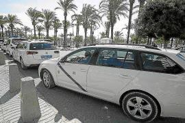 Unidas Podemos pedirá a Sant Antoni que se posicione sobre las licencias de taxi