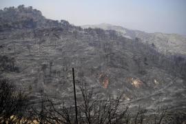 Mallorca sufre uno de los peores incendios de su historia