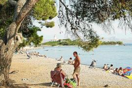 Playa de Alcanada