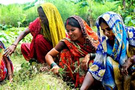 Mujeres indias: el futuro, en sus manos