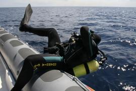 Vigilantes bajo el mar