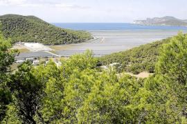 Serra Escandell, absuelto de un delito de prevaricación por una obra ilegal en el Parque de Ses Salines