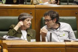 El Parlamento Vasco declara el derecho a la autodeterminación de Euskal Herria