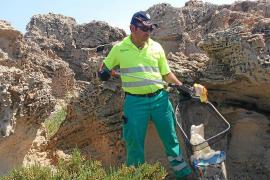 Medi Ambient retira 400 kilos de residuos de la zona de es Trucadors, en Illetes