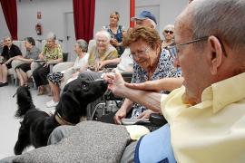Los planes de pensiones se podrán rescatar a los diez años de antigüedad