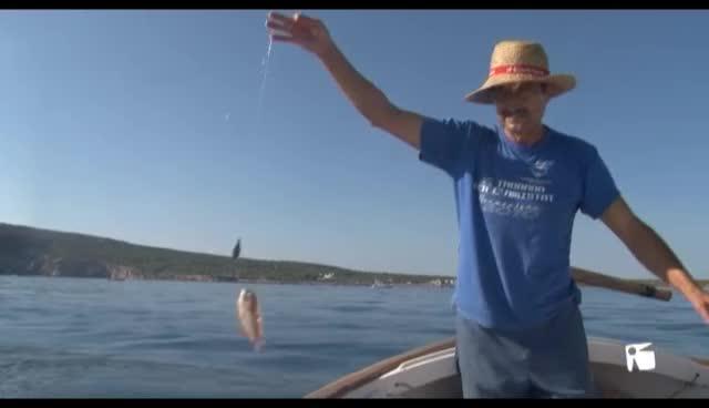 VÍDEO: Menos embarcaciones en el primer día de pesca del raor