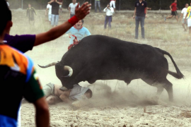 Enfrentamientos entre vecinos y antitaurinos en el Toro de la Vega