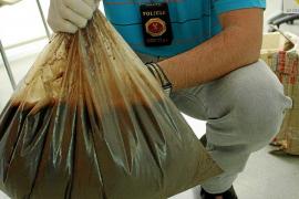 Absuelto un detenido con 11 kilos de ayahuasca porque se desconoce el porcentaje de pureza