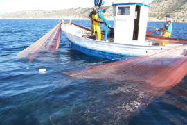 El Govern abre al turismo la pesca profesional