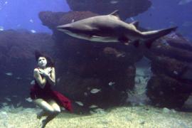 Nadine Werner, una modelo que posa entre tiburones como pez en el agua