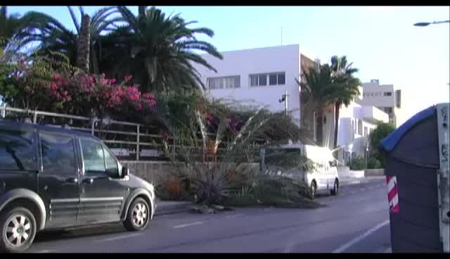 VÍDEO: El viento causa múltiples incidentes